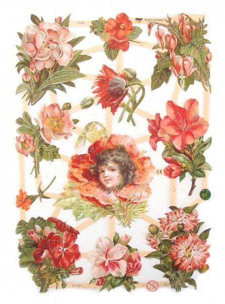 Glanzbilder, Blumen