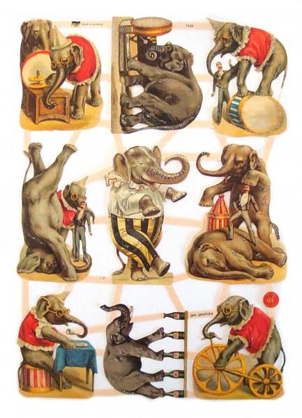 Glanzbilder, Zirkuselefanten