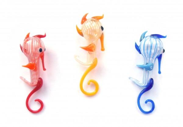 Seepferdchen, Wassertänzer zufällige Farben