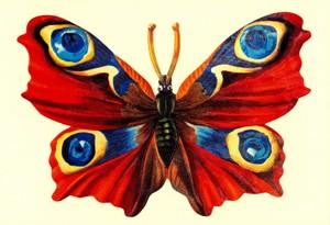 Aufstellschmuckkarte roter Schmetterling
