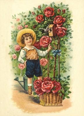 nostalgische Präge - Postkarte - Junge am Rosenstr