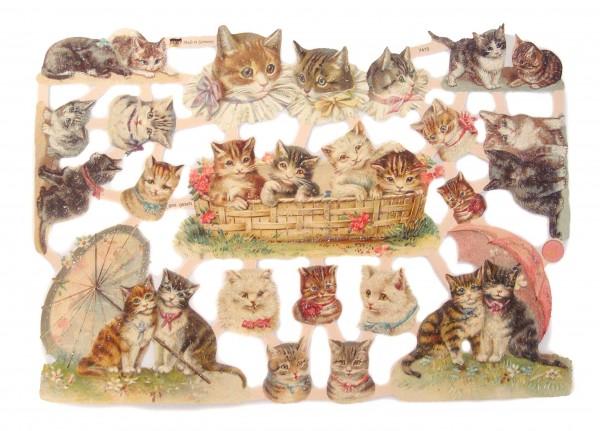 Glanzbilder, Katzen