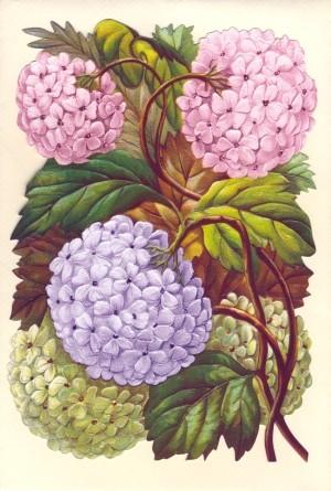 Aufstellschmuckkarte Blumen