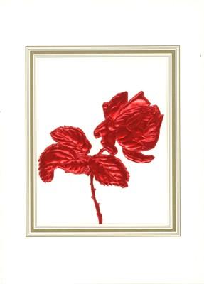 Handgefertigte Karten - Rose groß, rot